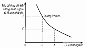 Duong Cong Phillips